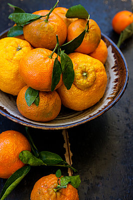 Fruit bowl with tangerines - p1106m2151441 by Angela DeCenzo