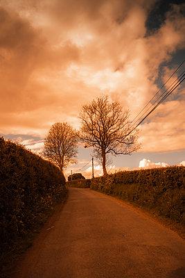 Ireland, Louth, Rural road - p1681m2283692 by Juan Alfonso Solis