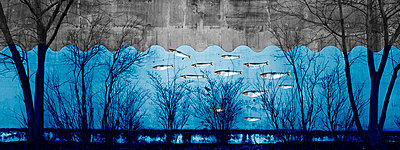 Blue wall - p415m808540 by Tanja Luther