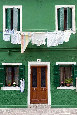 Green house wall - p4510324 by Anja Weber-Decker