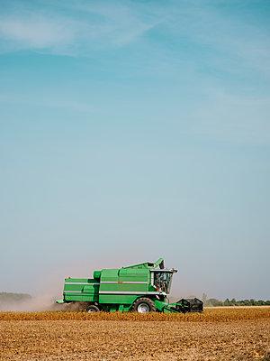 Serbia, Vojvodina, Combine harvester in soybean field - p300m2012902 von oticki