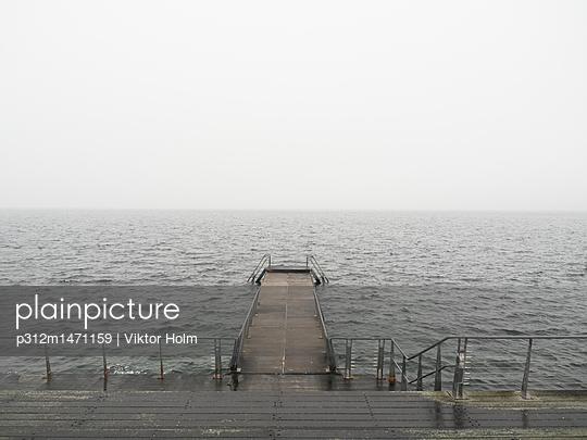 p312m1471159 von Viktor Holm