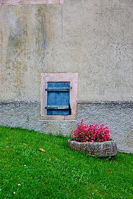 Bepflanzter Steintrog - p248m954085 von BY