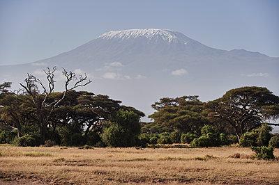 View of Mount Kilimanjaro, Kenya - p706m2158439 by Markus Tollhopf