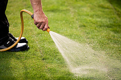 Cropped image of man watering grass turf in lawn - p426m719877f by Katja Kircher