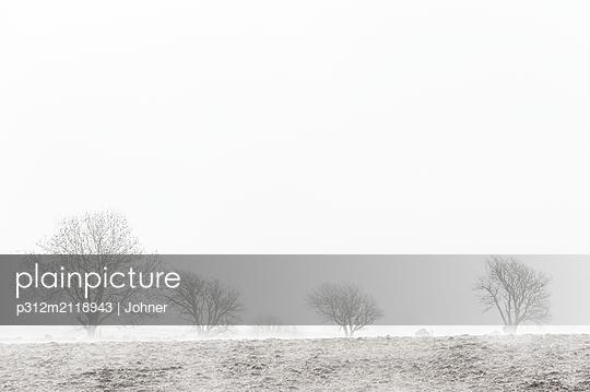 Winter landscape - p312m2118943 by Johner