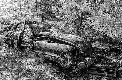 Autofriedhof bei Ryd, Schweden - p1463m2020845 von Wolfgang Simlinger