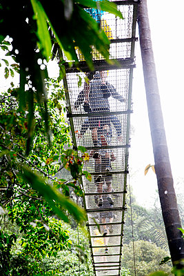 Tourists on rope bridge in rainforest, low angle view - p312m1131488f by Lena Granefelt