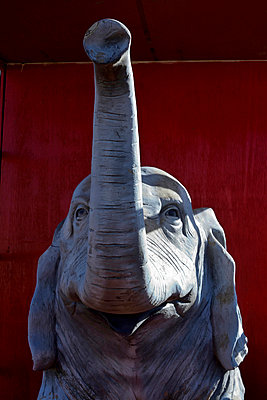 Elephant - p813m903901 by B.Jaubert