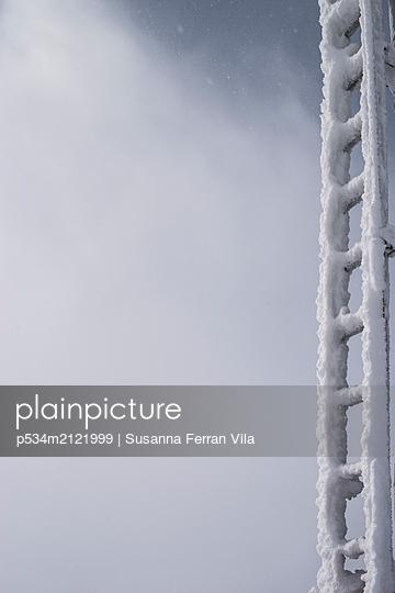 frozen ladder - p534m2121999 by Susanna Ferran Vila