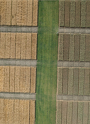 Full frame aerial view of crops in agricultural landscape, Stuttgart, Baden-Wuerttemberg, Germany - p301m1406295 by Stephan Zirwes