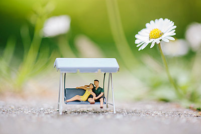 Miniature porch swing alongside marguerite flower - p586m1091029 by Kniel Synnatzschke