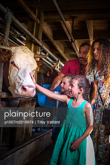Family in cow stable - p1007m2219974 by Tilby Vattard