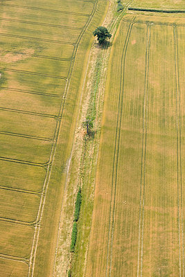 Field Boundary Aerial view - p1048m1069263 by Mark Wagner