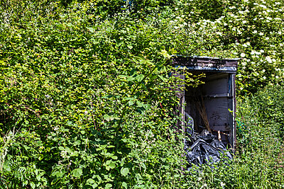 Allotment garden - p1057m1032511 by Stephen Shepherd