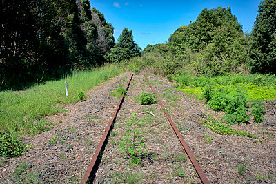 Abandoned rail tracks - p1125m1042672 by jonlove