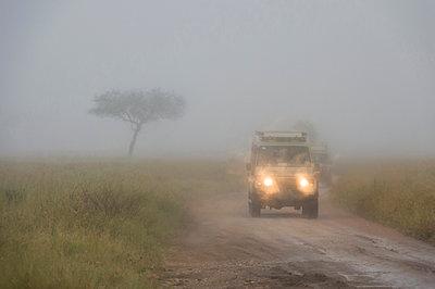 A safari vehicle driving in a rainstorm, Seronera, Serengeti National Park, Tanzania - p429m2019109 by Delta Images