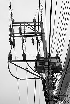 Electric post and phone cables - p442m884018f by Teresa Arévalo de Zavala