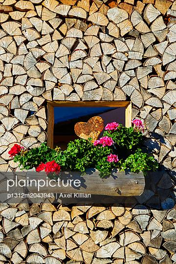 Holz Wand Geranie Herz - p1312m2043943 von Axel Killian