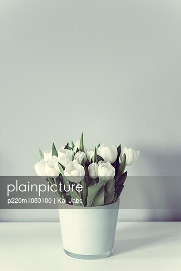 Tulpen - p220m1083100 von Kai Jabs