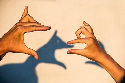Hands making shadows - p312m1228995 by Fredrik Schlyter