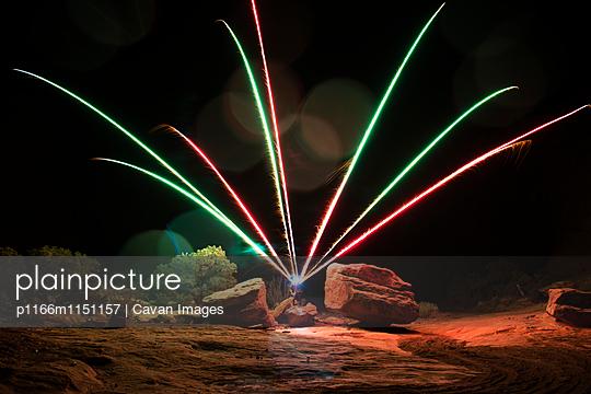 p1166m1151157 von Cavan Images