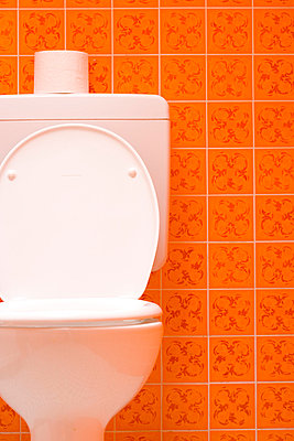 Toilet paper - p2480875 by BY