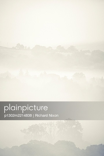 Early morning misty landscape - p1302m2214838 by Richard Nixon