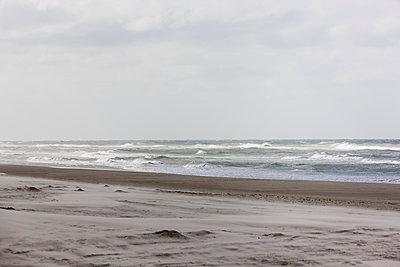 Beach in Denmark - p248m952905 by BY