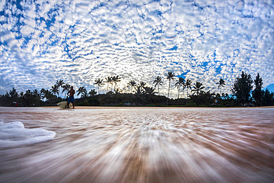Surfer and palm trees on beach, Oahu, Hawaii, USA - p343m1491191 by Sean Davey