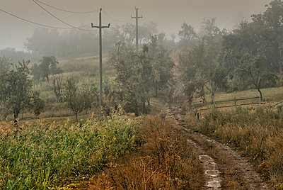 Rural road - p1072m1106054f by Grigore Roibu