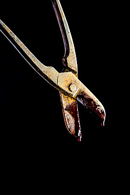 A rusty pair of metal working shears dripping with blood, against a black background - p1302m2142107 by Richard Nixon