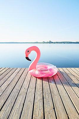 Flamingo - p464m2196590 von Elektrons 08