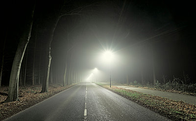 Road leading through forest, at night, Breda, Noord-Brabant, Netherlands - p429m1227260 by Mischa Keijser