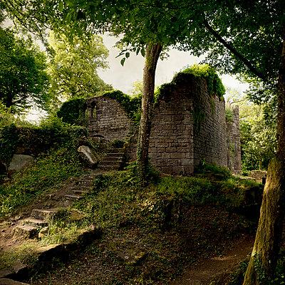 Castle ruins Eberbach - p470m2284190 by Ingrid Michel