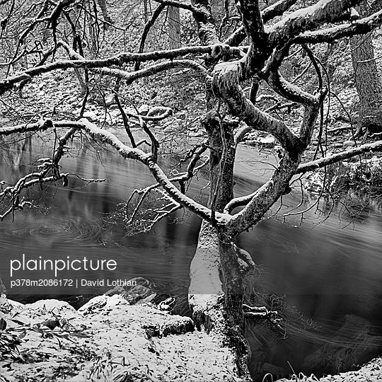 Hermitage - p378m2086172 by David Lothian