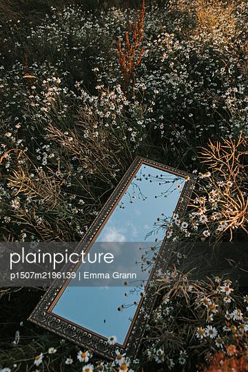Schweden, Spiegel in einem Blumenfeld - p1507m2196139 von Emma Grann