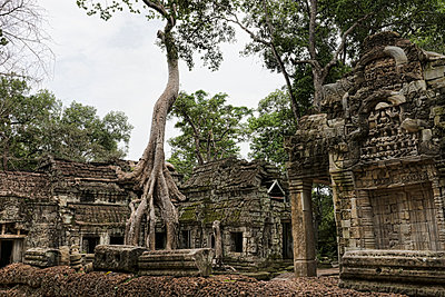 Ancient Angkor temple overrun with roots - p1445m1586177 by Eugenia Kyriakopoulou