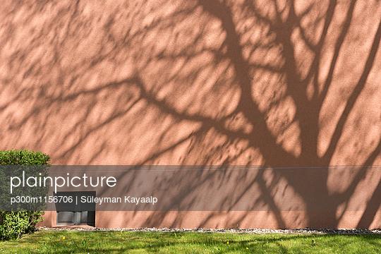 p300m1156706 von Süleyman Kayaalp