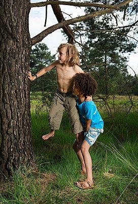 Kids play in the woods - p1132m1152770 by Mischa Keijser