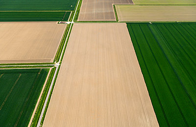 Fields with roads and ditches between them in spring, aerial view, Netherlands - p924m2127205 by Mischa Keijser