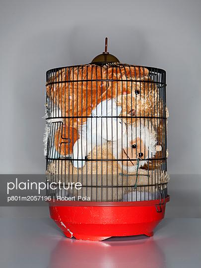 Käfig mit Kuscheltieren - p801m2057196 von Robert Pola