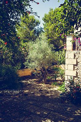 Garten - p904m1044980 von Stefanie Päffgen