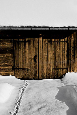 Barn door - p248m822840 by BY