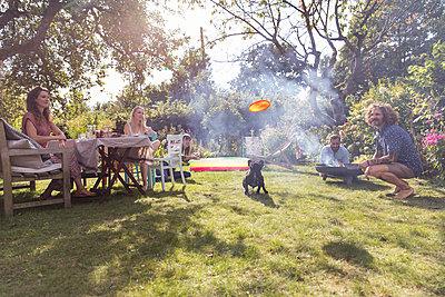 Hund spielt mit Frisbee - p788m2037316 von Lisa Krechting