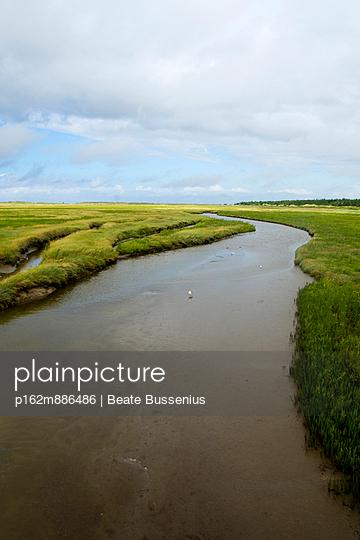Entwässerungsgraben - p162m886486 von Beate Bussenius