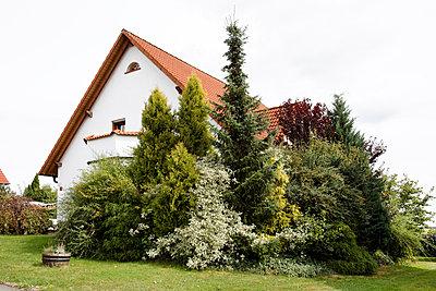 At home - p238m898947 by Anja Bäcker