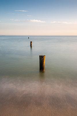 Groyne on coast of Baltic Sea at dawn - p300m2220545 by Anke Scheibe