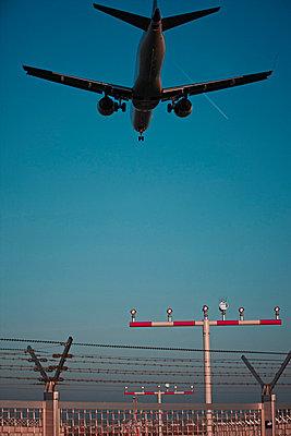 Aeroplane landing on airport - p300m660068f by Tom Hoenig
