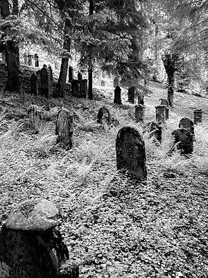 Jüdischer Friedhof - p318m2194509 von Christoph Eberle